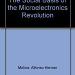 The Social Basis of the Microelectronics Revolution